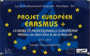 sections europeennes